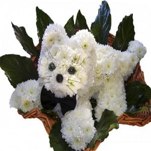 Купить игрушка из цветов-№15 в Хабаровске