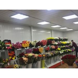 Магазин цветов на ул. Большая, 34