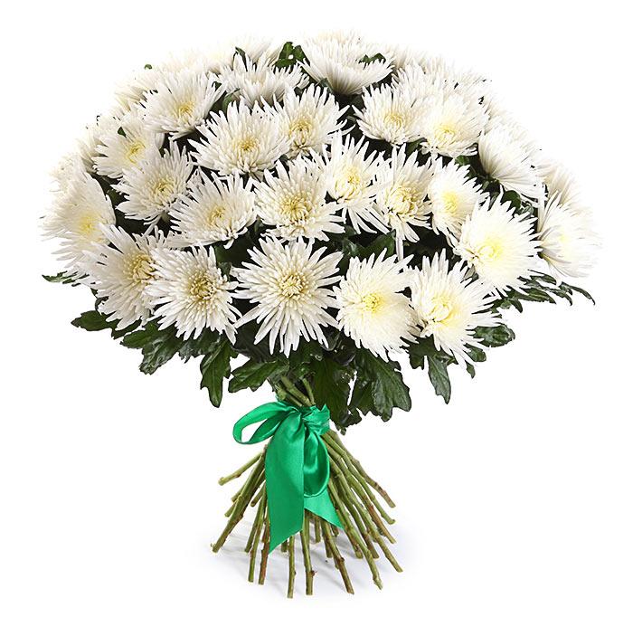 Цветы дом, хризантемы цена за букеты цветов