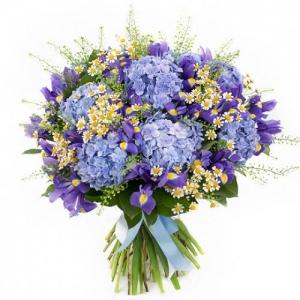 Купить букет из голубых гортензий и ромашек в Хабаровске