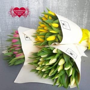 Купить букет из 35 тюльпанов в Хабаровске