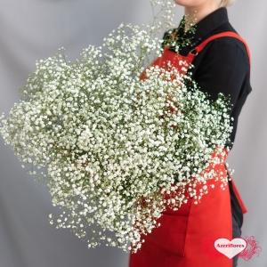 Купить гипсофилу с доставкой в Хабаровске