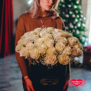Купить коробку из 101 белой розы в Хабаровске