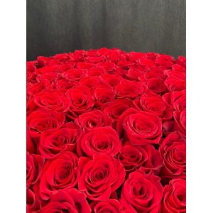 Купить охапку из 101 розы (130 см) с доставкой в [r-seoseo-city-name-pp]