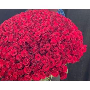 Купить охапку из 351 роз с доставкой в Хабаровске