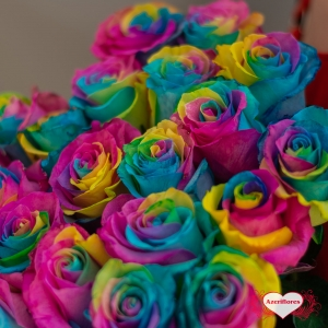 Купить охапку из 25 радужных роз в Хабаровске
