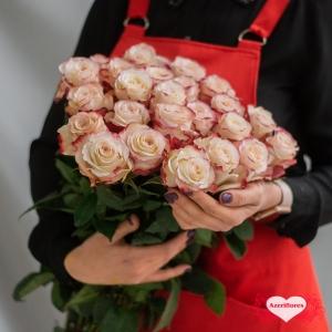 Розы Swiftness поштучно с доставкой в Хабаровске