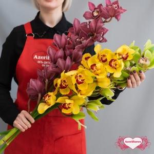 Купить ветку орхидеи поштучно в Хабаровске