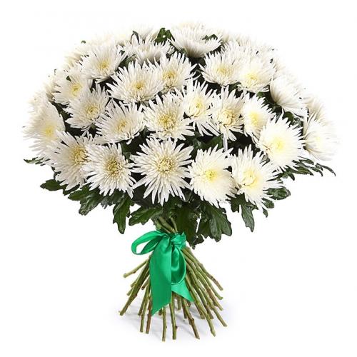 Купить букет из 35 хризантем в Хабаровске