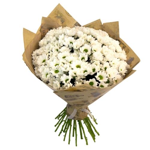 Купить букет из 19 хризантем ромашки в Хабаровске