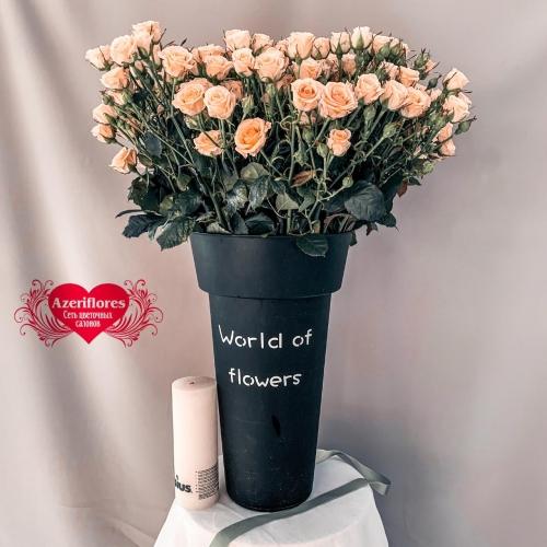 Купить розовую кустовую розу в Хабаровске