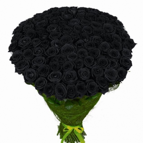 Купить охапку из 51 чёрных роз в Хабаровске