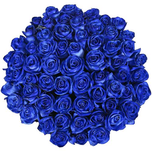 Купить охапку из 51 розы в Хабаровске